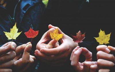 El pacto de reparto de dividendos por cabeza y con independencia del número de participaciones sociales